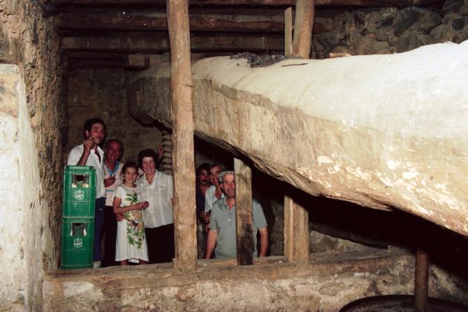Anécdotas del vino | cultyocio.es
